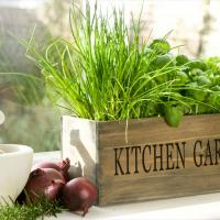 Image: www.onsuttonplace.com   When it comes to creating a little farmhouse flair, you can't go wrong with galvanised metal planters.   Did any of these kitchen herb planters pique your interest? Let us know which ones you liked best in the comment box below.  Supplied by Samantha Anderson